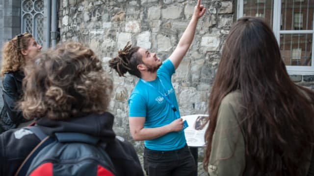 Free tour of Dublin guide explains the history of Dublin Castle